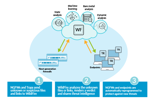 Palo Alto Networks: Traps Advanced Endpoint Protection
